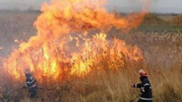 30 ha of land burned in last 24 hours