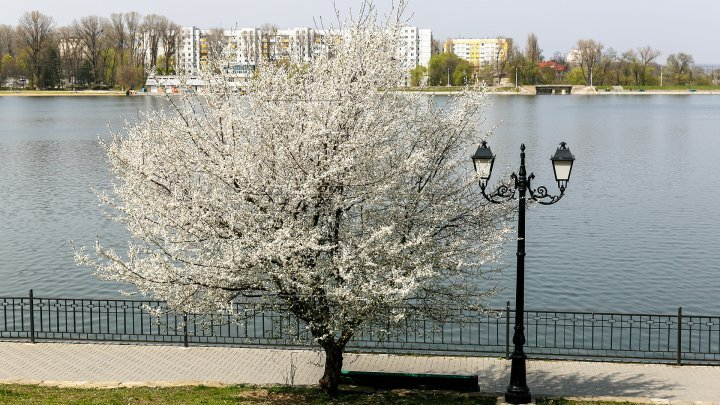 Weather forecast in Moldova for April 15, 2018