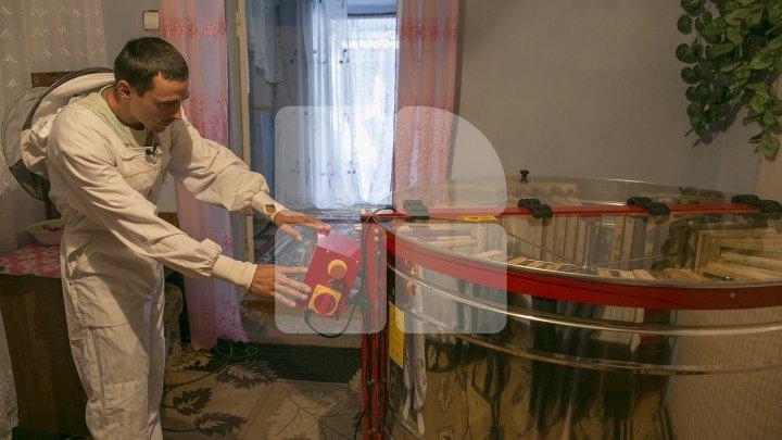 Moldovan who pulls off honey harvest thanks to AOAM reward (photoreport)