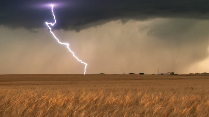 10 hectares of wheat destroyed after field hit by lightning