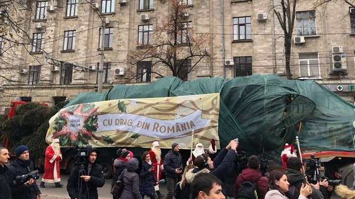 Christmas tree offered by Romanian Government reached capital
