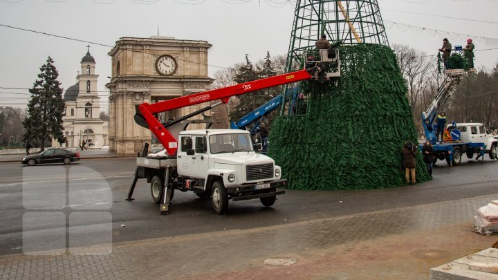 Christmas tree will be installed today in National Assembly Square (PHOTO)