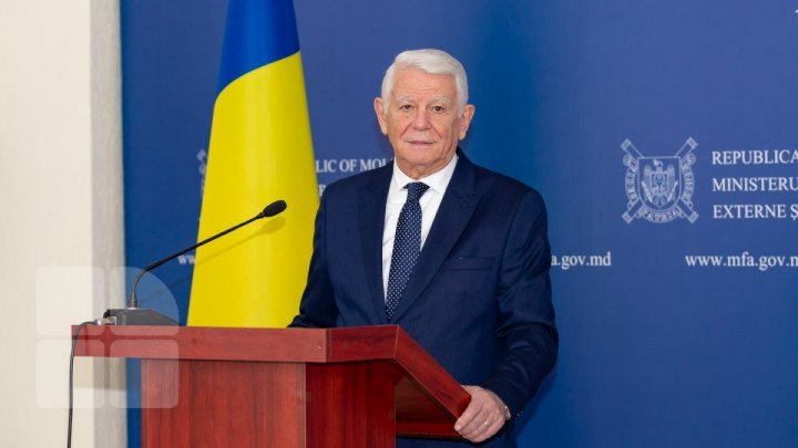 Teodor Melescanu: Creation of pro-European majority demanded after February elections