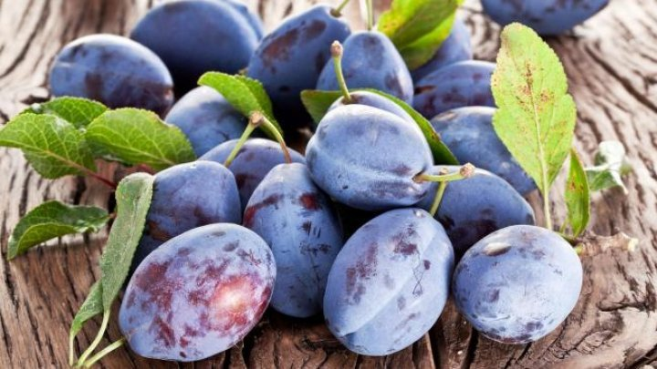 A batch of Moldovan plums destroyed in Russia