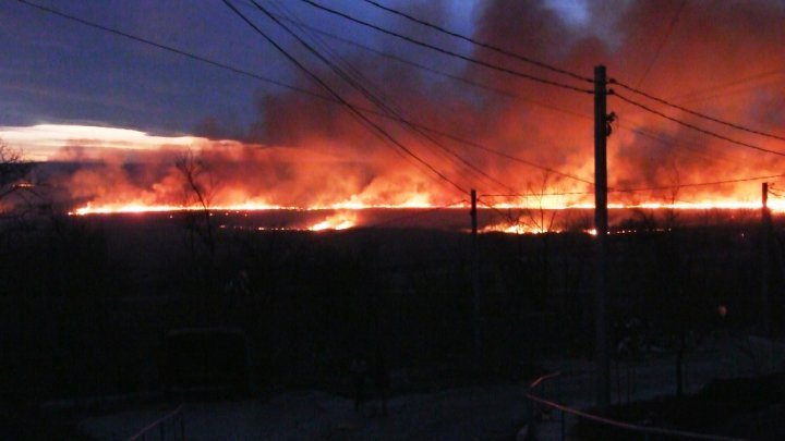 Dozens hectares of reeds from Cahul submerged in flames (video)