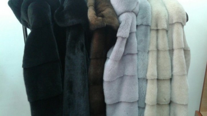Tax evasion: He imported fur clothing in Moldova for personal use but what he did instead