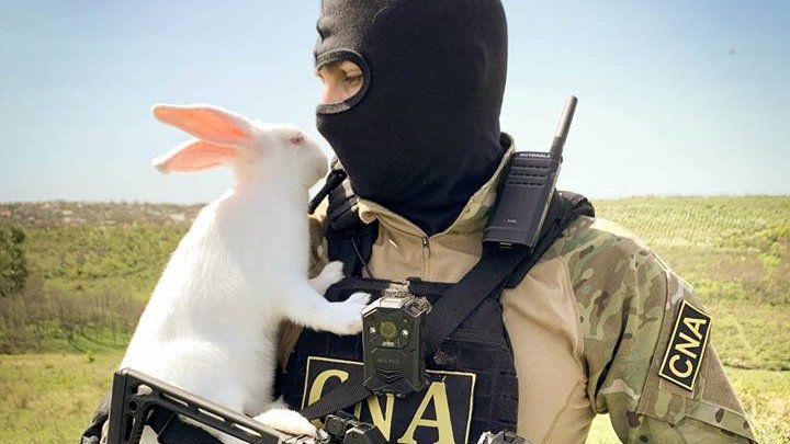How Anti-corruption Officers rejoice Easter after work?