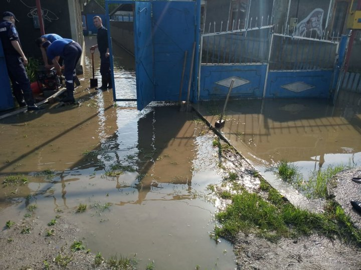 Crops ripped out and rescuers sought to pump water following weekend heavy rain (photo)