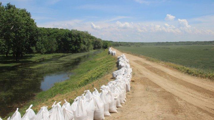 Nistru river water level rise: Rescuers, carabinieri, militants continue strengthen the levee in Crocmaz village