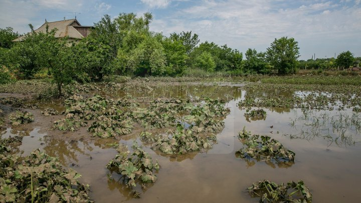 Government releases 1 million MDL for the flood-damaged villages from Orhei