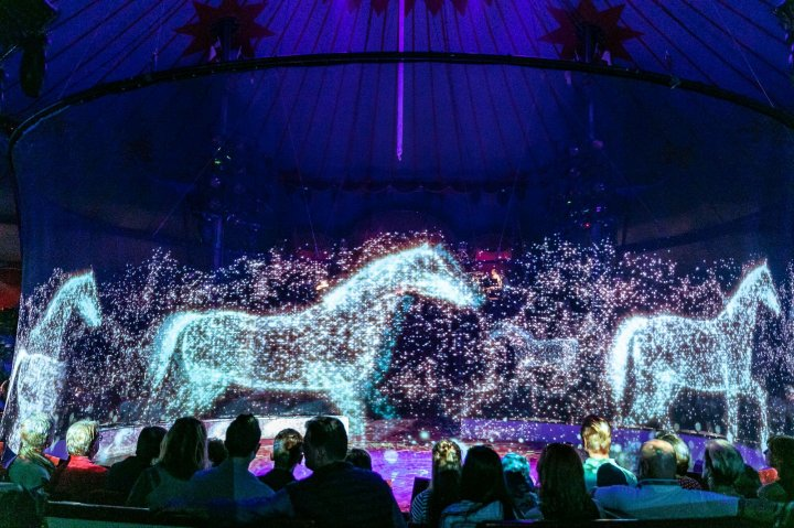 This circus in Germany uses holograms instead of animals! (PHOTOS)