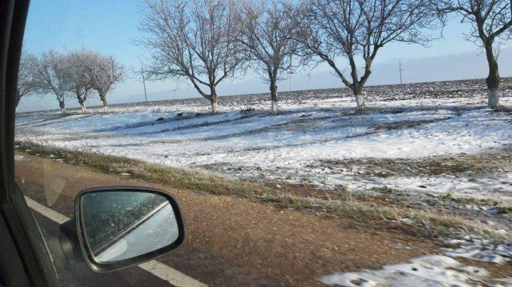 Freezing rain trees, a fairy tale landscape, captured in Soroca