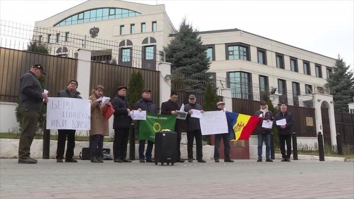 Russian Embassy protest: Ecologist Green Party demands illegal troop withdrawal