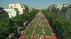 Ieri, bulevardul Champs-Elysees din Paris a fost transformat într-o adevărată fermă