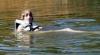În două zile, şase oameni s-au înecat în lacurile şi iazurile din Moldova