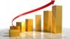 Preţurile mărfurilor şi serviciilor au crescut cu aproape 8% în luna mai 2010