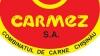 """Directorul general al """"Carmez"""" neagă implicarea lui Plahotniuc în atacurile raider asupra firmei"""