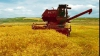 Guvernul va premia administraţiile raioanelor fruntaşe la strânsul recoltei