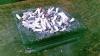 Agenţia Antimonopol va controla localurile publice dacă au spaţii amenajate pentru fumători