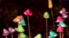 Glumă de Paşte: Un american şi-a găsit grădina umplută cu 900 de acadele în formă de iepuraş