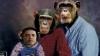 Fotografia cu Obama pe post de maimuţă stârneşte polemici în SUA