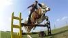 Sărituri peste obstacole cu vaca VEZI VIDEO