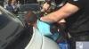 CCCEC şi Procuratura au reţinut un prim suspect în cazul fraudelor de la Chişinău Gaz