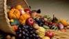 Cresc exporturile de mărfuri moldoveneşti în România