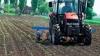 Fermierii nu vor să-şi asigure terenurile agricole AFLĂ DE CE