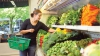 """Ucraina şi Moldova au instituit un """"coridor verde"""" pentru transportul fructelor şi legumelor"""