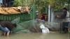 Pagube după ploaie: Zeci de case inundate, drumuri deteriorate şi terenuri agricole afectate