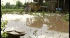 Ploile au lăsat în beznă zeci de case şi au compromis mai multe culturi agricole