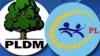 Consilierii liberali de la Străşeni îi acuză pe aleşii locali de la PLDM de coaliţie cu PCRM
