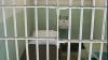 Moldovean condamnat la 17 ani de închisoare în Italia AFLĂ PENTRU CE
