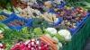 Moldova - o ţară agrară din care lipsesc pieţele agricole