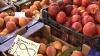 Recolta bogată de fructe moldoveneşti a redus preţul acestora