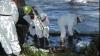 (VIDEO) Dezastru ecologic în SUA