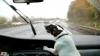 """(VIDEO) Cel mai """"turbat"""" câine! Latră la ştergătoarele în mişcare şi vrea să le muşte"""