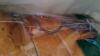 Şoarece viu într-o pâine împachetată, la supermarket