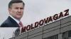 ANRE-ul şi toată populaţia trebuie să protesteze faţă de Moldovagaz, susţine Pleşca