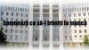 Deputat către colegii săi: Citiți Petiția Publika TV ca să înțelegeți care este voința poporului VIDEO