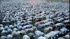 Musulmanii s-au adunat la Mecca pentru a marca Sărbătoarea Sacrificiului