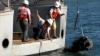 Un tun al corabiei piratului Barbă Neagră a fost scos din ocean după trei secole