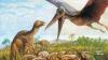 Senzaţional: Au fost descoperite cuiburi cu ouă de păsări preistorice şi o nouă specie de dinozaur