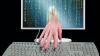 Un hacker a publicat parolele a 90.000 de conturi