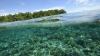 În Australia va fi înfiinţat cel mai mare parc maritim din lume