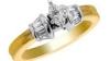 A căutat în opt tone de gunoaie inelul de logodnă în valoare de 10.000 de dolari