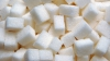 Preţul zahărului s-a redus cu 20 la sută în ultimile două săptămâni