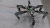 Asterisk - robotul-păianjen versatil