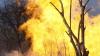Locuitorii a trei sate evacuaţi din cauza unui incendiu de proporţii